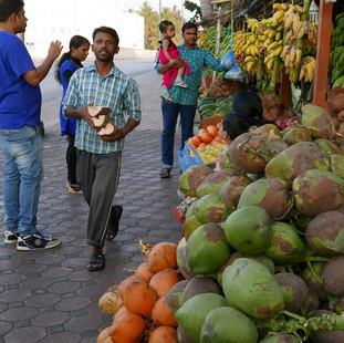 Plantage, fruitkramen, Salalah, Oman.JPG
