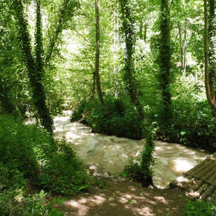 Qadisha river.JPG