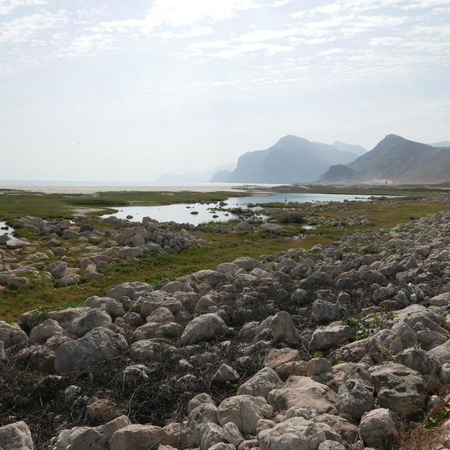 Mughsail, Dhofar, Oman.JPG