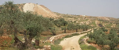 West Bank.jpg