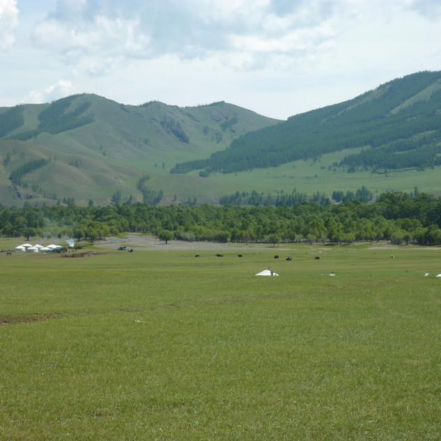 weids landschap rondreis Mongolie Saffraan Reizen