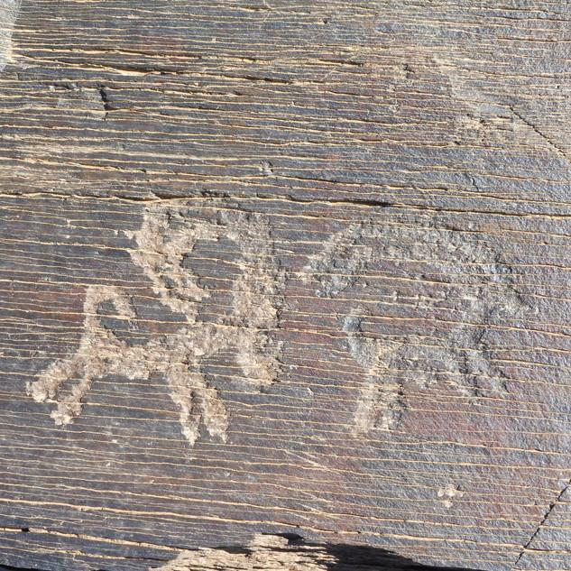petroglyf 2.JPG
