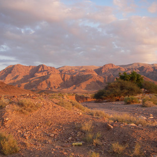 Onderweg in Wadi Feynan.JPG