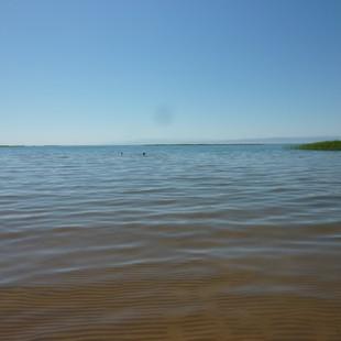 Zwemmen Aydarkul meer Saffraan Reizen rondreis Oezbekistan.JPG