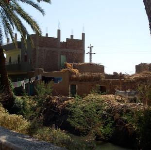 Het Egyptische plattelandsleven op de We