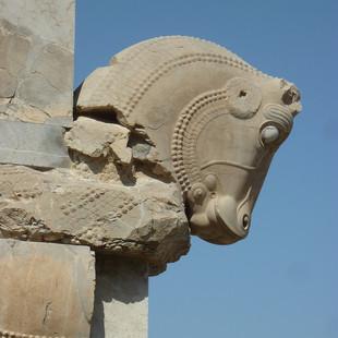 Rondreis Iran Saffraan Reizen Persepolis paardenhoofd, Iran.JPG