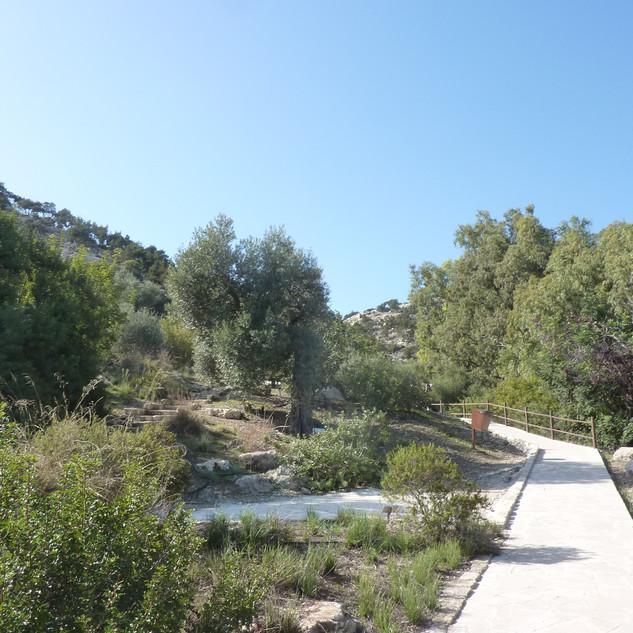 Wandelen in botanische tuin Aphrodite's grot.JPG