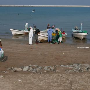 Vissers in Barka, Rondreis Oman - Saffraan Reizen.JPG