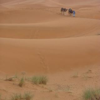 Merzouga Sahara Marokko.JPG