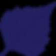 birkmann-clinic-logo