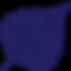 Birkmann Clinic logo blue leaf