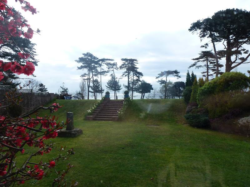 Beautiful Devon Garden