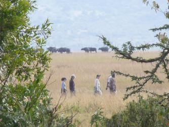 Kenya - The End