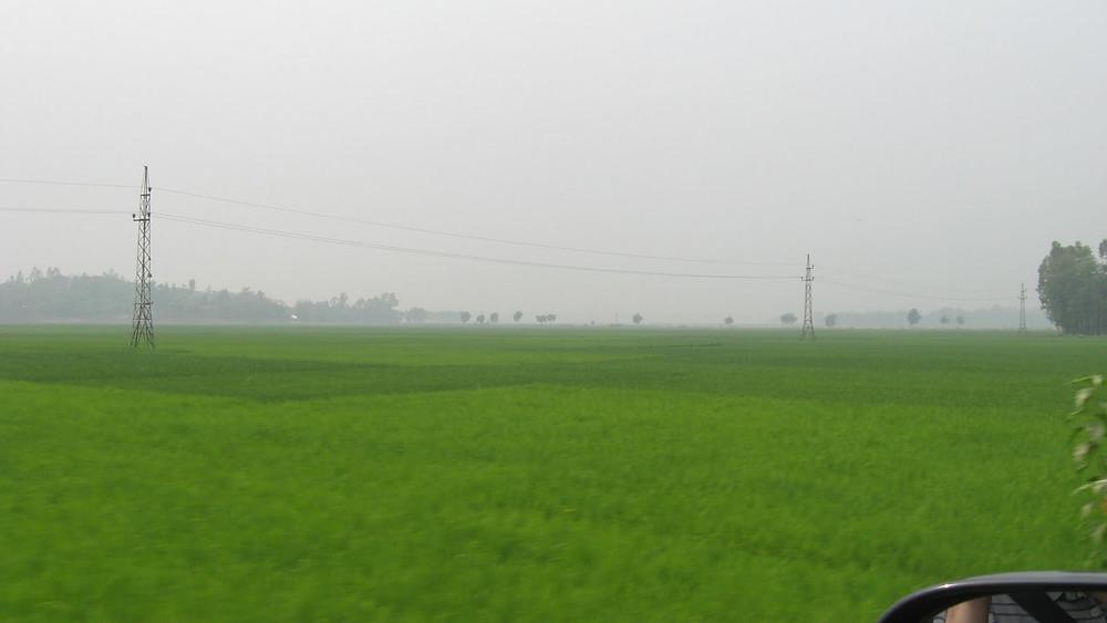 Picasa - Bangladesch 661.jpg