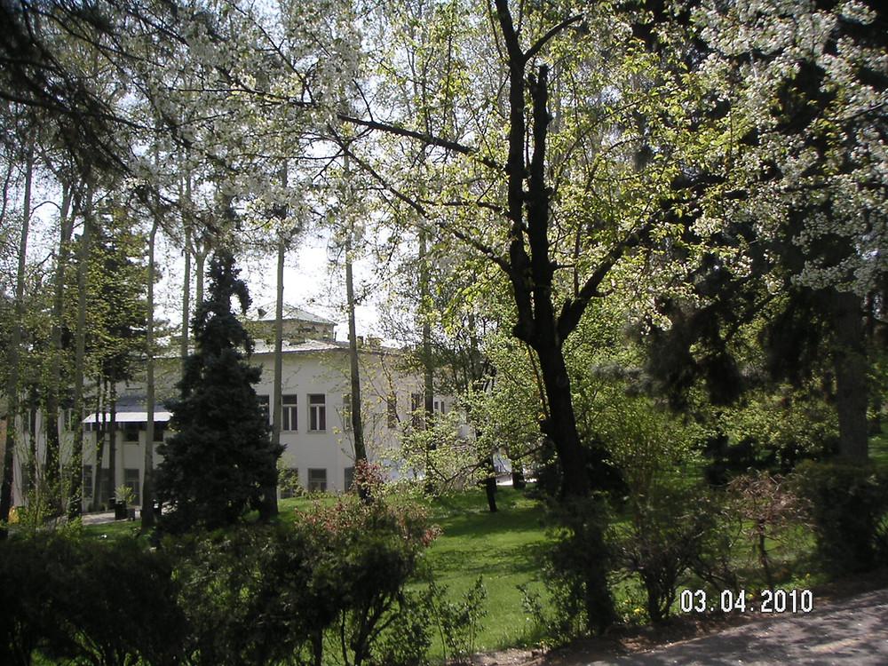 Gardens of Sabeydabad Palace