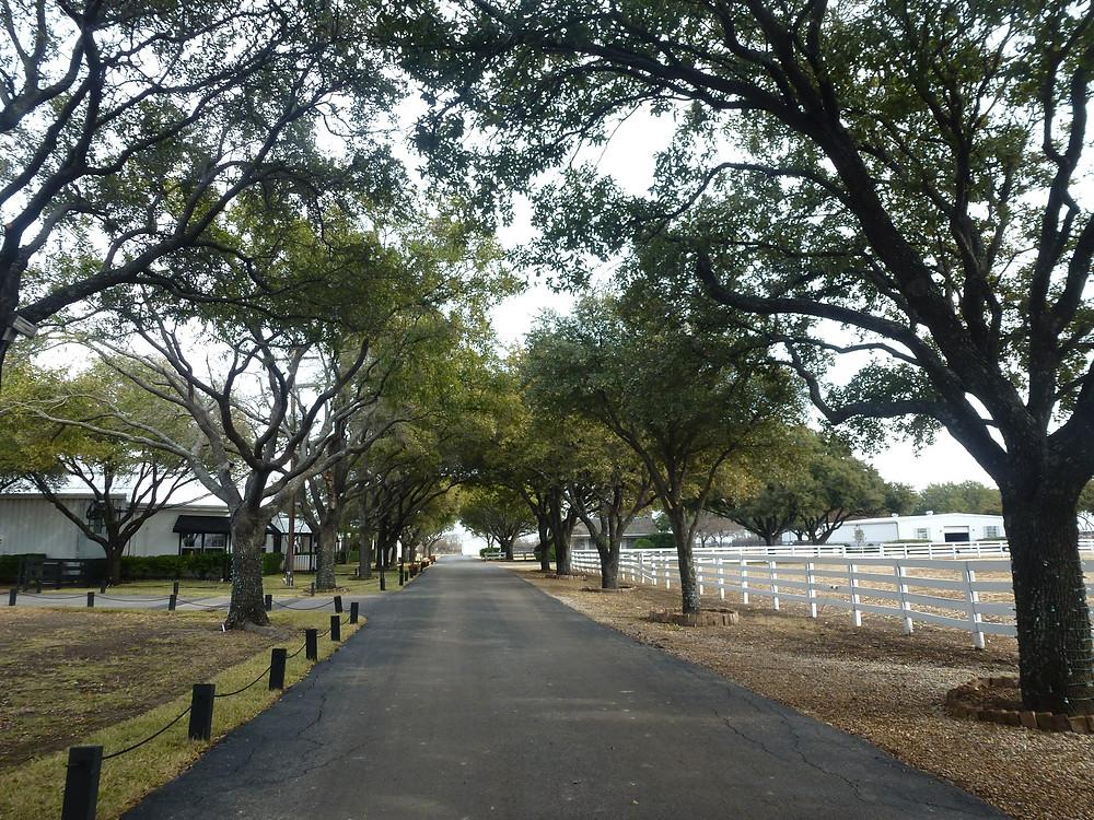 Dallas Farm