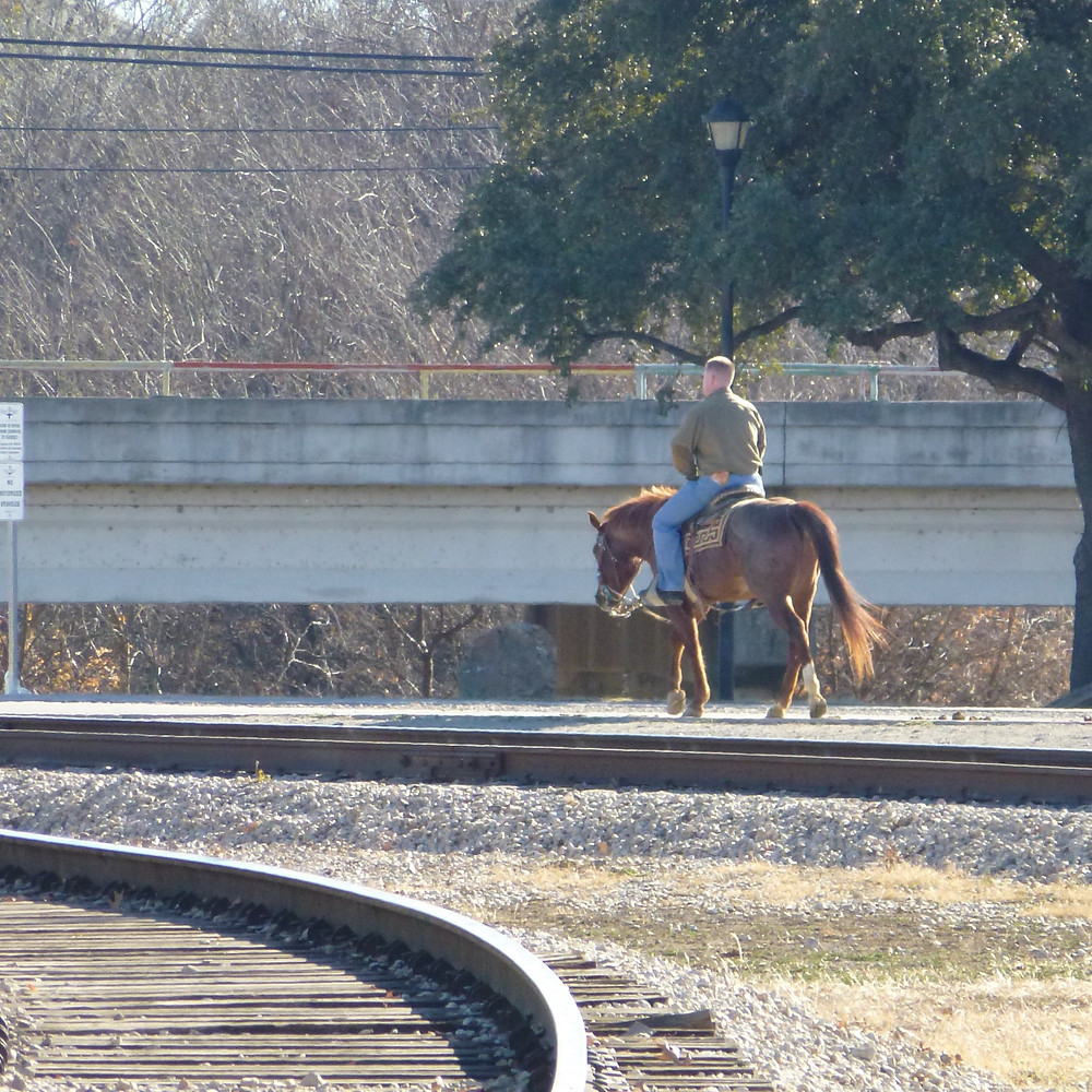 Horse rider by the railway