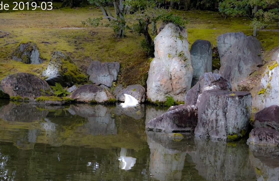 Reflections of Japanese Deity
