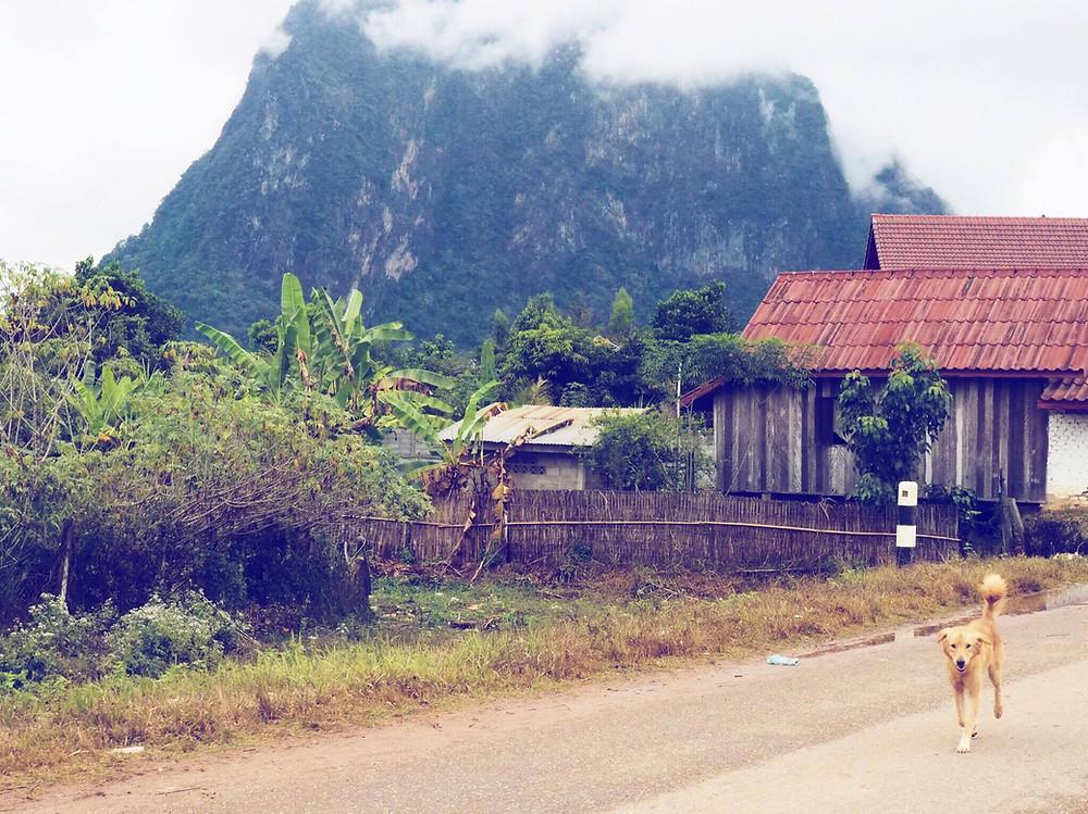 Volunteering in Laos