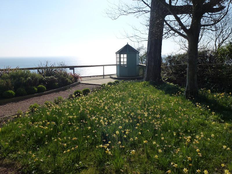 Seaview from Devon Cottage