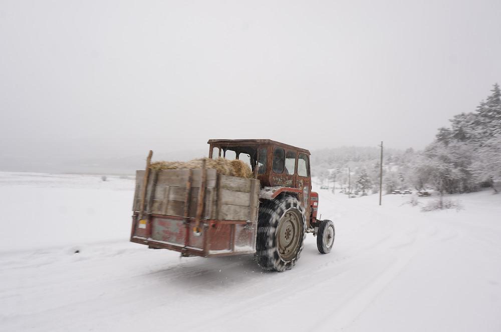 Abant under snow, Bolu, Turkey