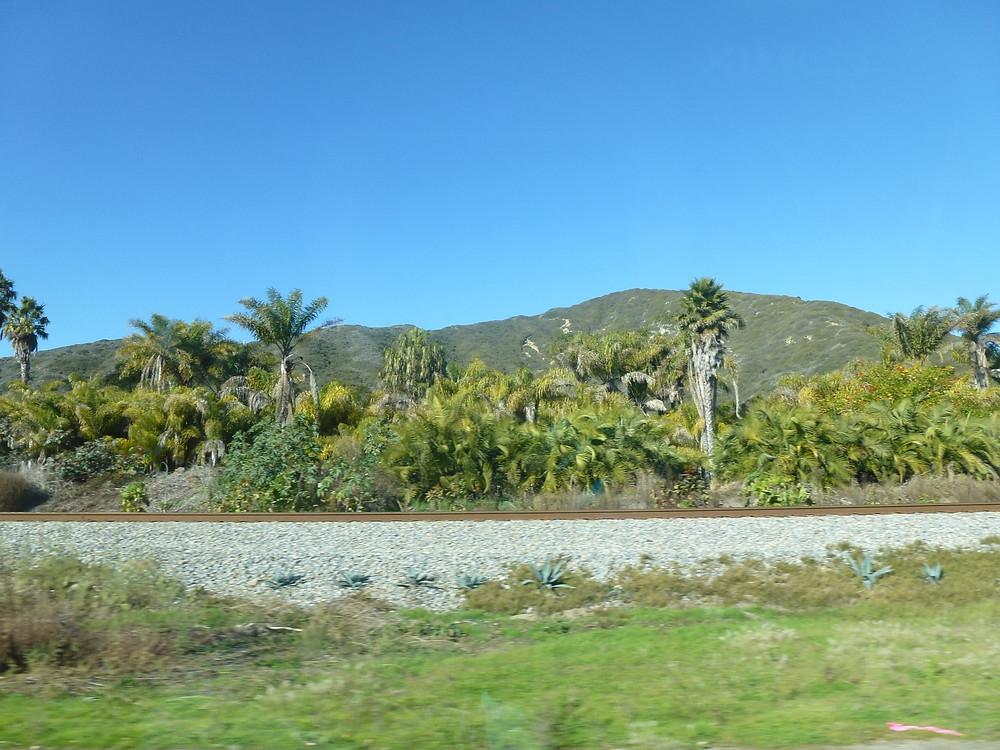 Pacific Coast Highway Railway