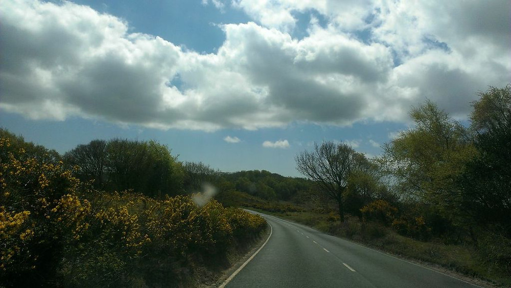Overcast Road to New Forest
