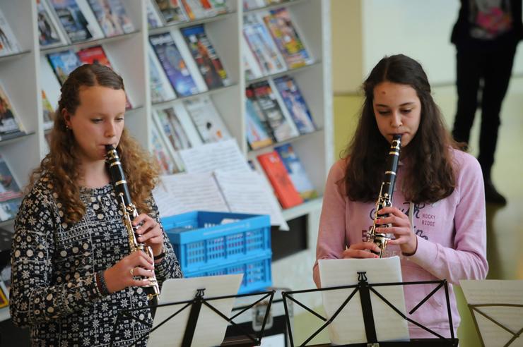 concert_bibliotheek_assen_2015 (9).jpg