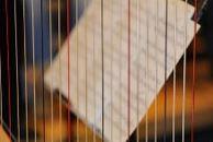 Nieuw! Harples bij Klankrijk Drenthe