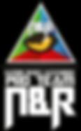 logo-pro-team-N_R2.png