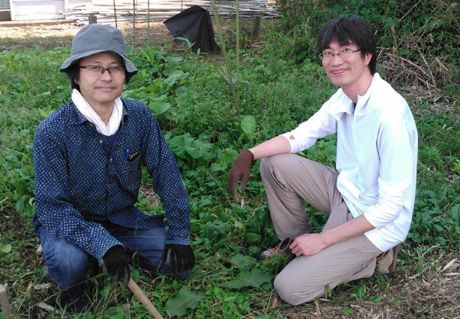 協生農法で複雑なものにアプローチ 野菜の森をつくる