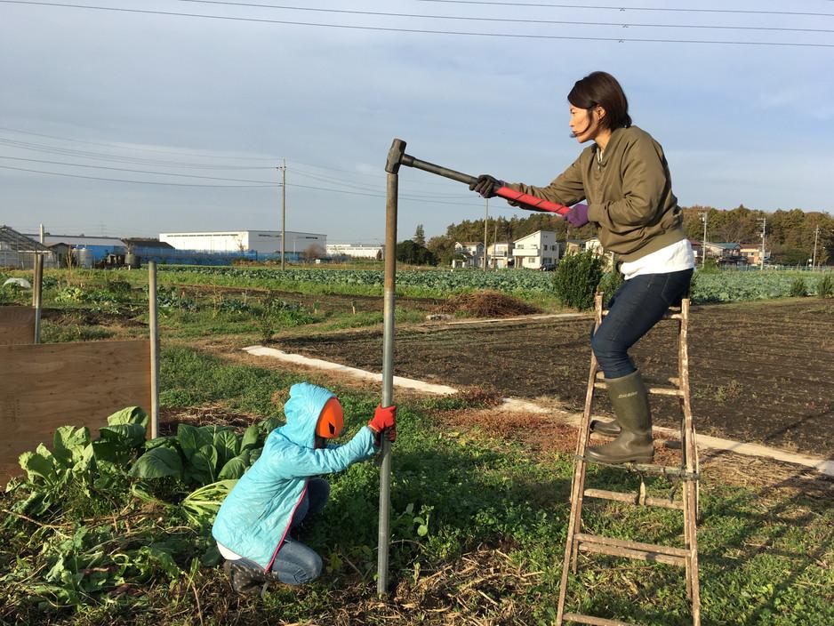 神奈川で農家になろうと会社を辞め、有機農家さんの元で研修を行い、結局独立就農せず就職した話。