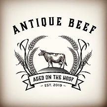 Check out _antique.beef #dairymeat #anti