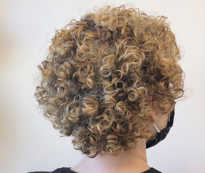 curlshapeback2.jpg