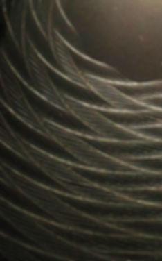 Close-up: Rose Engine Turned Harley Davison Sportster Derby Cover