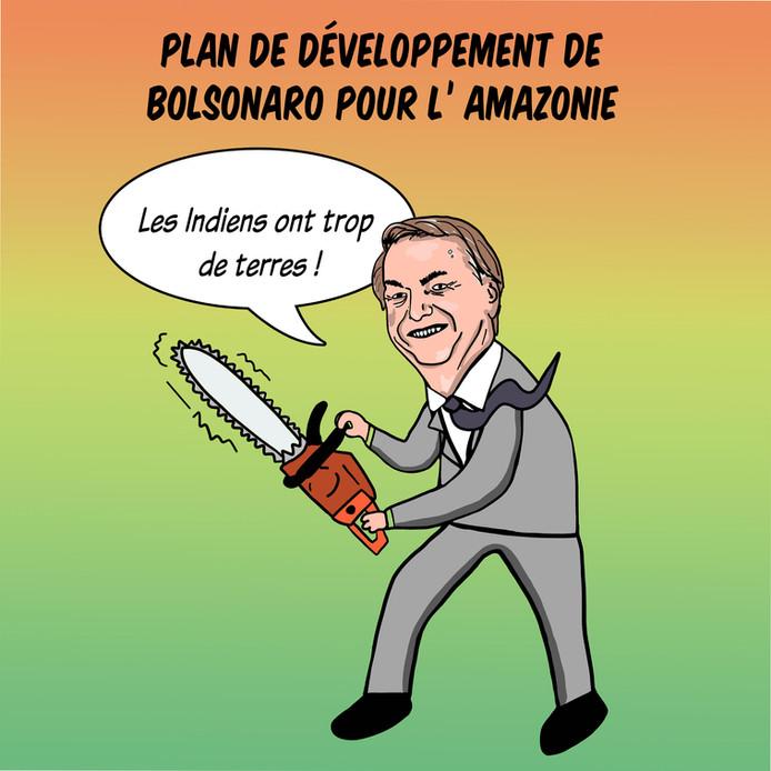 Plan de développement de Bolsonaro pour le Brésil