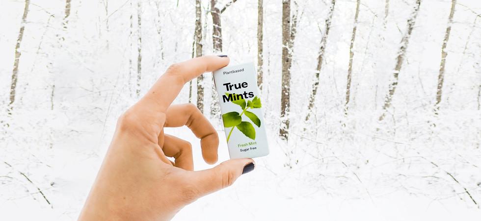 true-mints-banner.jpg