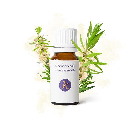 Teebaum | Ätherisches Öl Bio - Khaty's