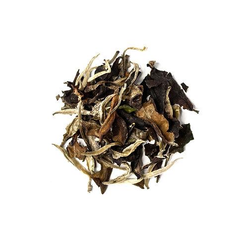 White tea «Moonlight» - Teas of Eden