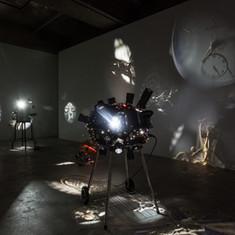 installation view,  2018