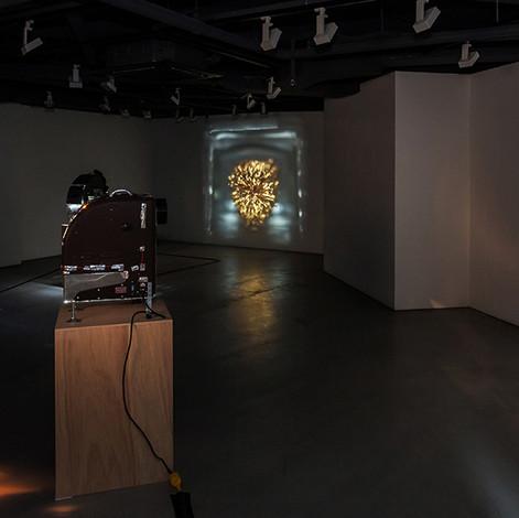 installation view,  2017