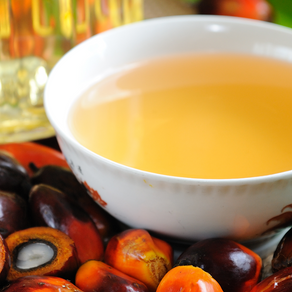 What is Palm Oil & Should You Support The Palm Oil Industry?