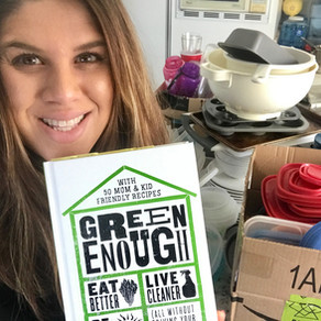 Green Enough Book Review + 5 Simple Questions To See If This Book Is Right For You