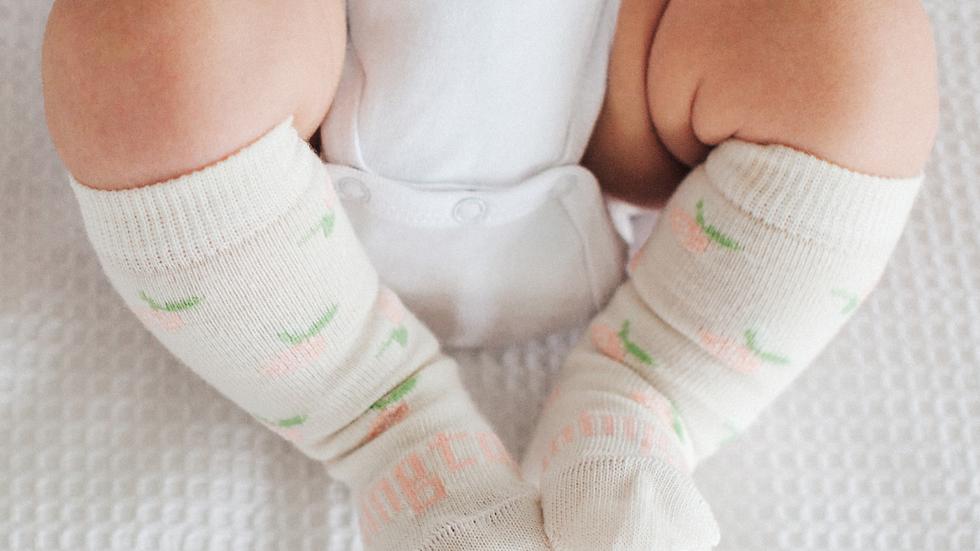 Lamington -  Rosie Knee High Merino Socks