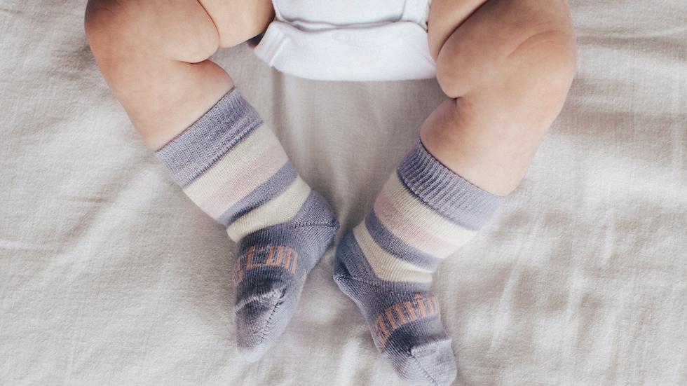 Lamington - Tilly Crew Merino Socks