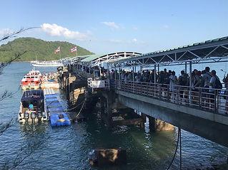 Dolphin pier