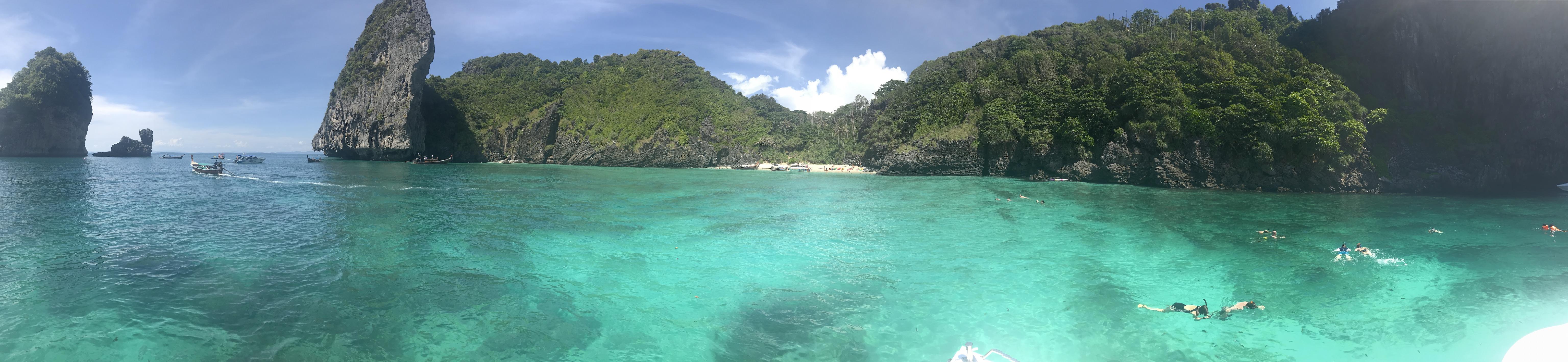 Splash Jungle