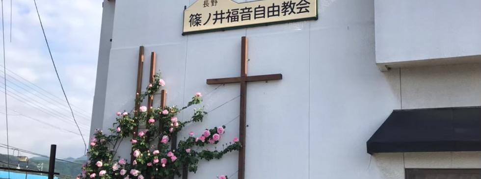 薔薇_201113_0.jpg
