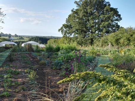 Une définition pour la permaculture ?