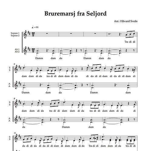 Bruremarsj fra Seljord SSAA